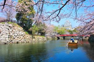 姫路城 天守閣と桜に赤い城見橋と観光学習船の写真素材 [FYI02678946]