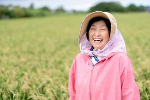 農家で働く笑顔のシニア女性の写真素材 [FYI02678948]