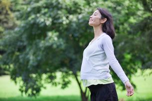 緑の中を歩く女性の写真素材 [FYI02679017]