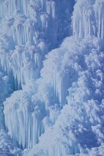 西湖樹氷まつりの写真素材 [FYI02679293]