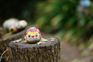 尾道の福石猫の写真素材 [FYI02679297]