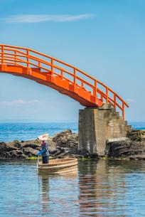 新潟県 佐渡島 小木のたらい舟の写真素材 [FYI02679301]
