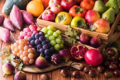 秋の野菜と果物の写真素材 [FYI02679390]