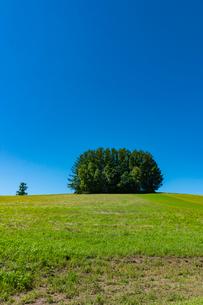 旧マイルドセブンの丘と青空の写真素材 [FYI02679457]