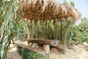 草の屋根と丸太のテーブルとベンチの写真素材 [FYI02679458]