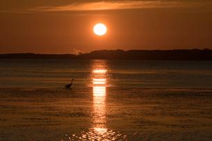 サロマ湖の朝日の写真素材 [FYI02679512]