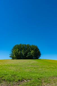 旧マイルドセブンの丘と青空の写真素材 [FYI02679525]