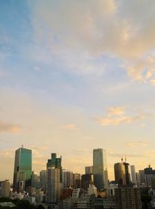 夜明けの港区の街並みの写真素材 [FYI02679541]