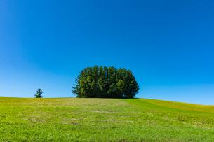 旧マイルドセブンの丘と青空の写真素材 [FYI02679575]