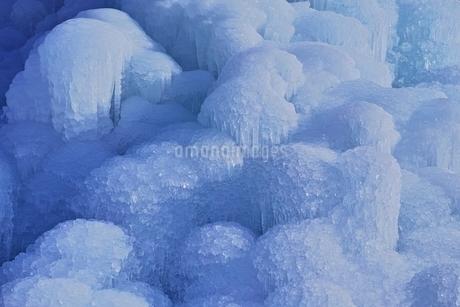 西湖樹氷まつりの写真素材 [FYI02679604]