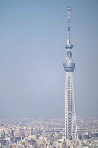 豊洲から見た東京スカイツリー方面の写真素材 [FYI02679652]