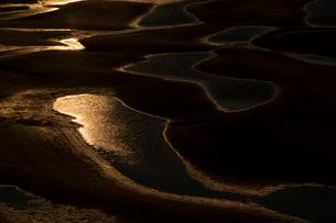 干潮の新舞子干潟の写真素材 [FYI02679719]