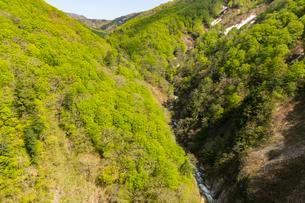 大橋から望む城ヶ倉渓谷の写真素材 [FYI02679751]