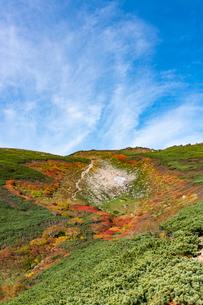 赤岳第三雪渓付近の紅葉の写真素材 [FYI02679923]