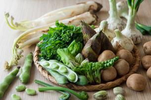 春野菜の写真素材 [FYI02679979]