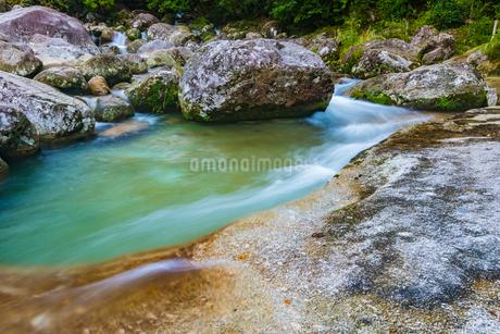 屋久島 横河渓谷の写真素材 [FYI02680128]