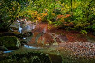 愛媛県 滑床渓谷の写真素材 [FYI02680272]