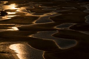 干潮の新舞子干潟の写真素材 [FYI02680290]