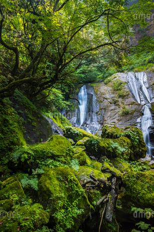 母滝の写真素材 [FYI02680335]