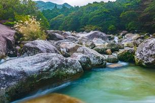 屋久島 横河渓谷の写真素材 [FYI02680396]