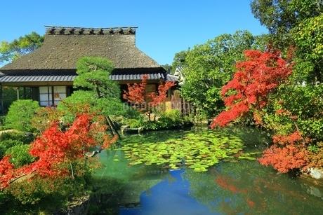 紅葉の依水園の写真素材 [FYI02680417]