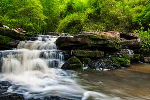 Tadnoi Waterfall, Thailandの写真素材 [FYI02680475]