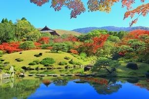 紅葉の依水園の写真素材 [FYI02680542]
