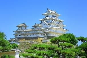 新緑の姫路城 西の丸庭園と天守群の写真素材 [FYI02680603]