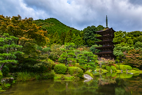 山口県 瑠璃光寺五重塔の写真素材 [FYI02680606]