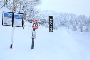 十勝岳温泉から望む樹氷林の写真素材 [FYI02680608]