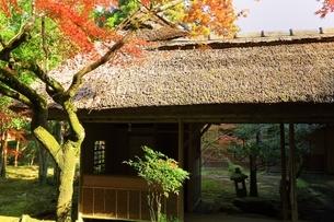 秋の九年庵の写真素材 [FYI02680655]