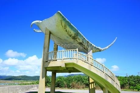 小浜島・海人公園の写真素材 [FYI02680664]