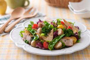 春野菜のトスサラダの写真素材 [FYI02680675]