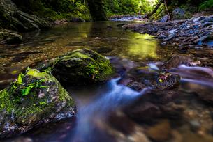 やんばるの川の写真素材 [FYI02680712]