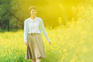 菜の花畑で写真を撮る若い女性の写真素材 [FYI02680728]