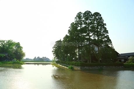 散居村の民家と水田の写真素材 [FYI02680729]