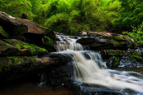 Tadnoi Waterfall, Thailandの写真素材 [FYI02680778]