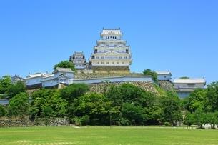 新緑の姫路城 三の丸広場と天守群の写真素材 [FYI02680792]