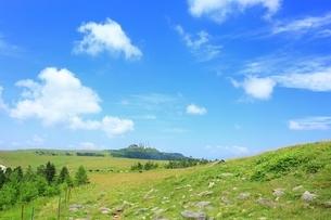 夏の美ヶ原高原の写真素材 [FYI02680805]