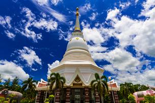 Wat Pa Ban Kho, Thailandの写真素材 [FYI02680815]