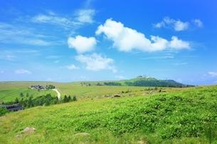 夏の美ヶ原高原の写真素材 [FYI02680832]