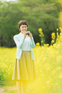 菜の花畑で写真を撮る若い女性の写真素材 [FYI02680851]