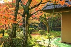 秋の九年庵の写真素材 [FYI02680897]