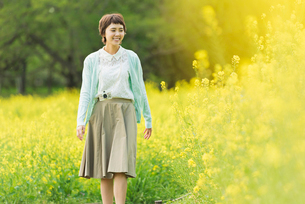 菜の花畑で写真を撮る若い女性の写真素材 [FYI02680905]