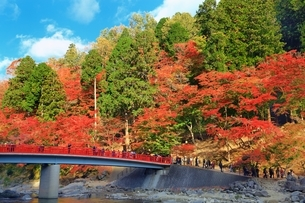 紅葉の香嵐渓の写真素材 [FYI02680929]