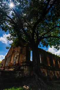 タイ  アユタヤ 遺跡群の写真素材 [FYI02680935]