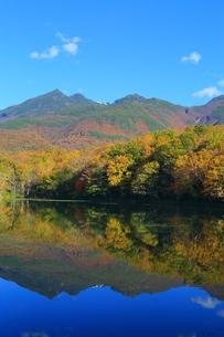 秋の知床五湖 四湖と知床連山の写真素材 [FYI02680951]