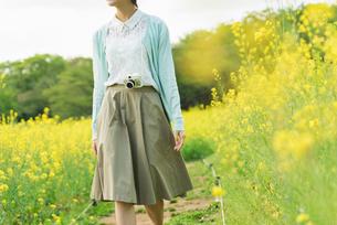 菜の花畑で写真を撮る若い女性の写真素材 [FYI02680980]