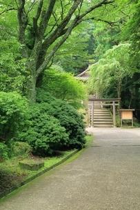 大峯奥駆道 金峯神社の写真素材 [FYI02681040]