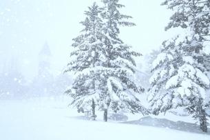 雪の北海道伝統美術工芸村の写真素材 [FYI02681105]